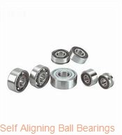 AST 2315 self aligning ball bearings