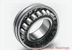 300 mm x 460 mm x 160 mm  KOYO 24060RK30 spherical roller bearings