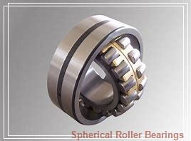 Toyana 22328 KCW33+AH2328 spherical roller bearings