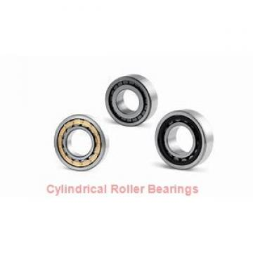 55 mm x 100 mm x 25 mm  ISB NUP 2211 cylindrical roller bearings