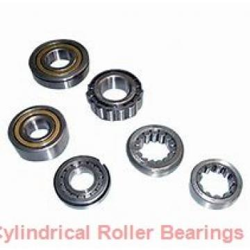 17 mm x 40 mm x 12 mm  Timken NJ203E.TVP cylindrical roller bearings